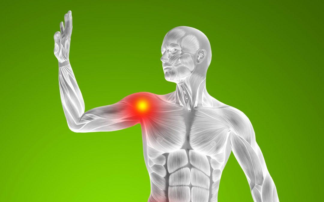 El ABC de las lesiones del manguito rotador en el hombro. (Lo que usted debe saber)
